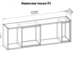 Румика НП1 полка