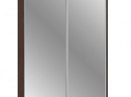 Шкаф-купе 2 (AL) 450/16 мм. зеркало