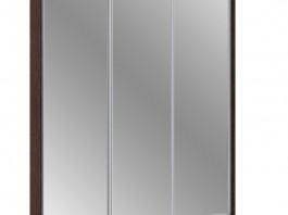 Шкаф-купе 3 (AL) 450/18 мм. зеркало